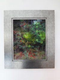 Umbría-III. 2015 30x38cm Ed.1/5 Archival Pigment Print on Hahnemühle Paper